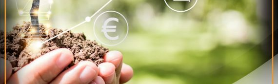 """Online Workshops  for the application of the educational material """"from farm to plate"""""""
